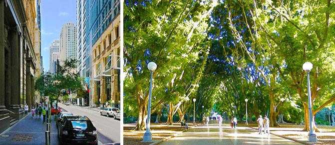 Hyde-Park-Sydney